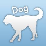 診療できる動物 犬