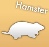 診療できる動物 ハムスター